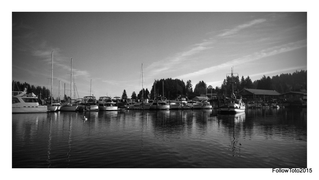 Marinas, Gig Harbor Bay, Gig Harbor, WA