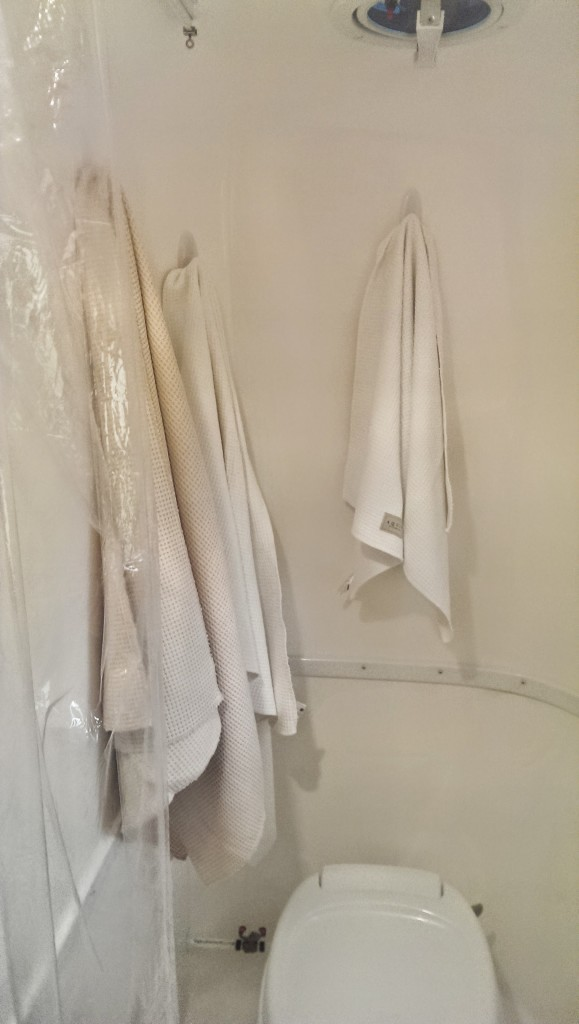 Towels on Command Hooks in Toto's powder room.
