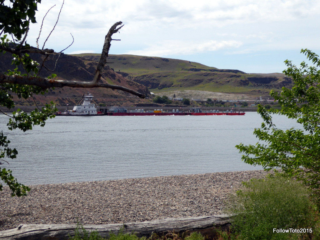 Tug pushes barge downstream on the Columbai