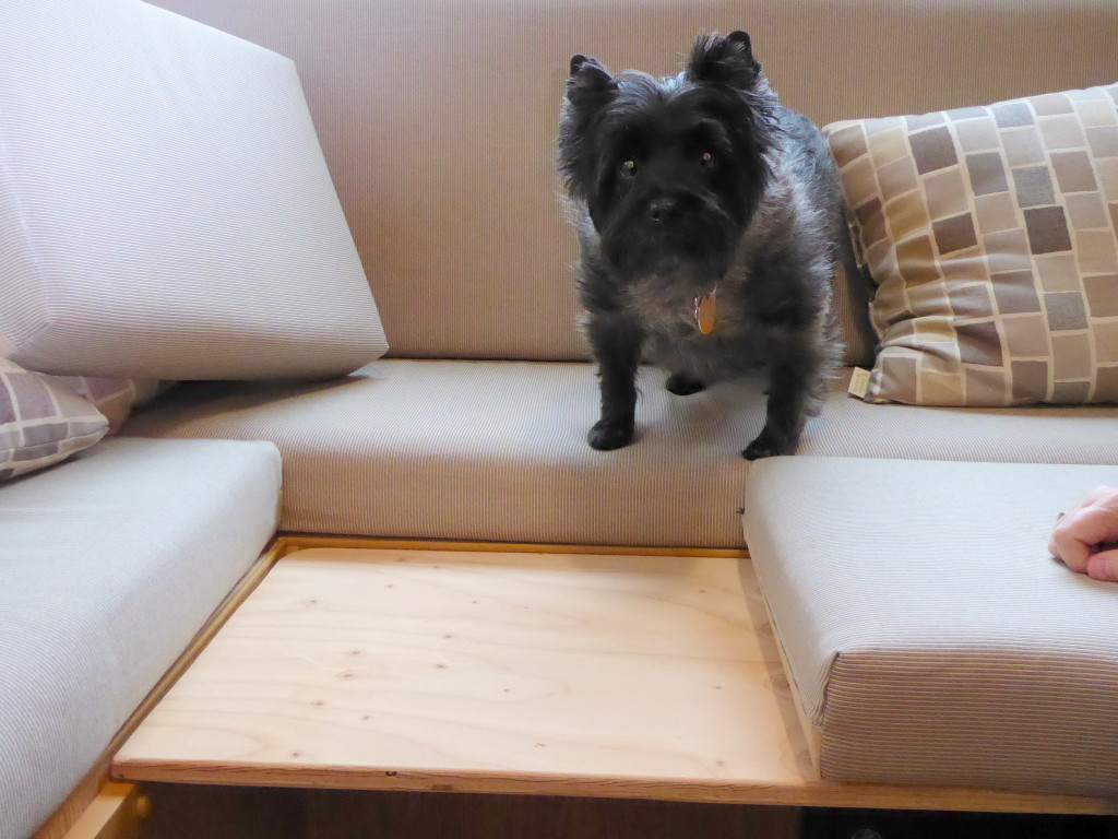 Tyler looks adequately entertained as he inspects my Toto Lounge experiment.