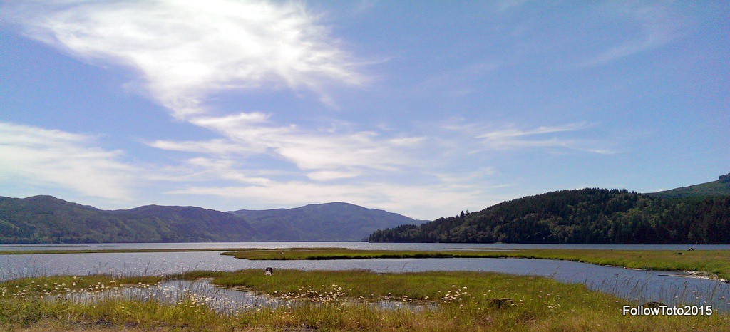 East end of Riffe Lake