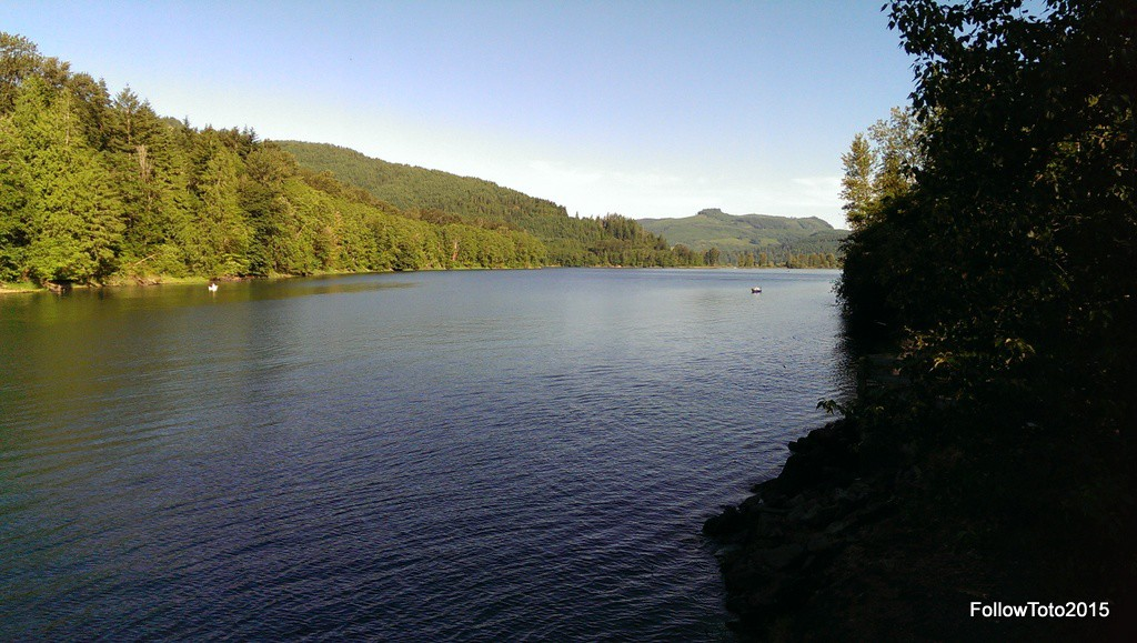 Riffe Lake with morning fishing boats.