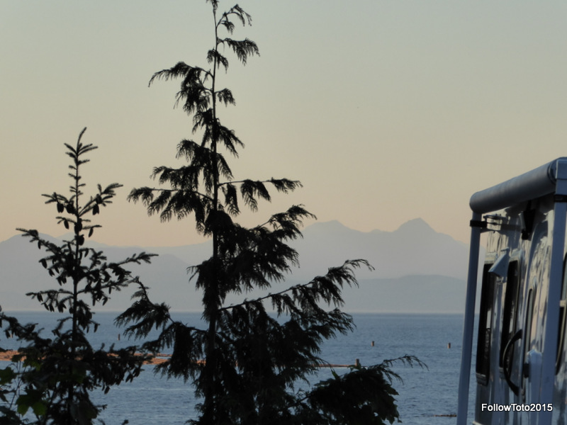 Nearby tree, Georgia Strait, mainland BC mountains at dusk. Nice.