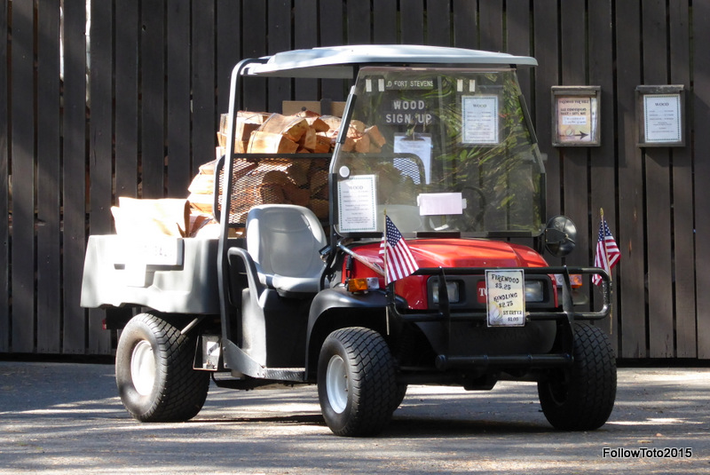 Converted golf cart carrying bundles of firewood.
