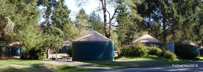 Green and brown yurts, clustered together (for safety?).