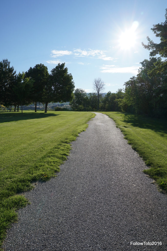 Our campsite was right next to a path 'trailhead.' This multipurpose trail headed off to a swimming beach, a launch ramp, some day use areas and, ultimately, to a connection with the mighty Apple Capital Recreation Loop Trail.