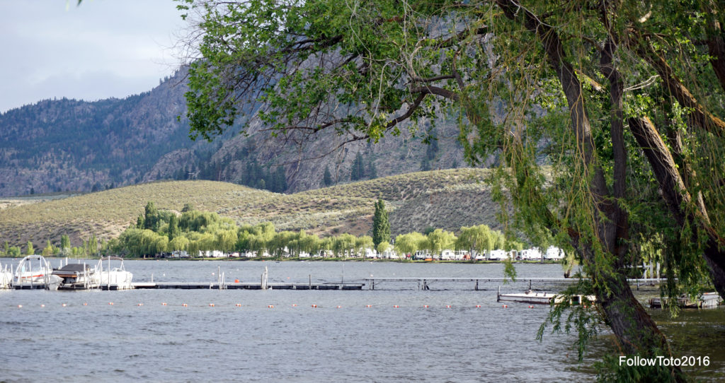 There are quite a few campsites along the Lake Osoyoos shoreline. You can see maybe 20% of them here, and that's the resort's small marina and swimming area in the foreground. Quite pleasant.