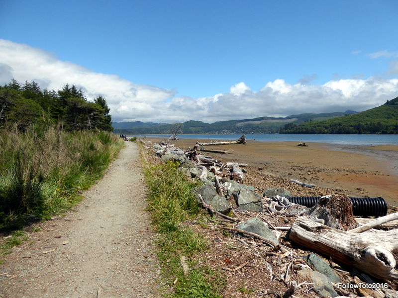 Just beyond the runway, the path arrives at Nehalem Bay.