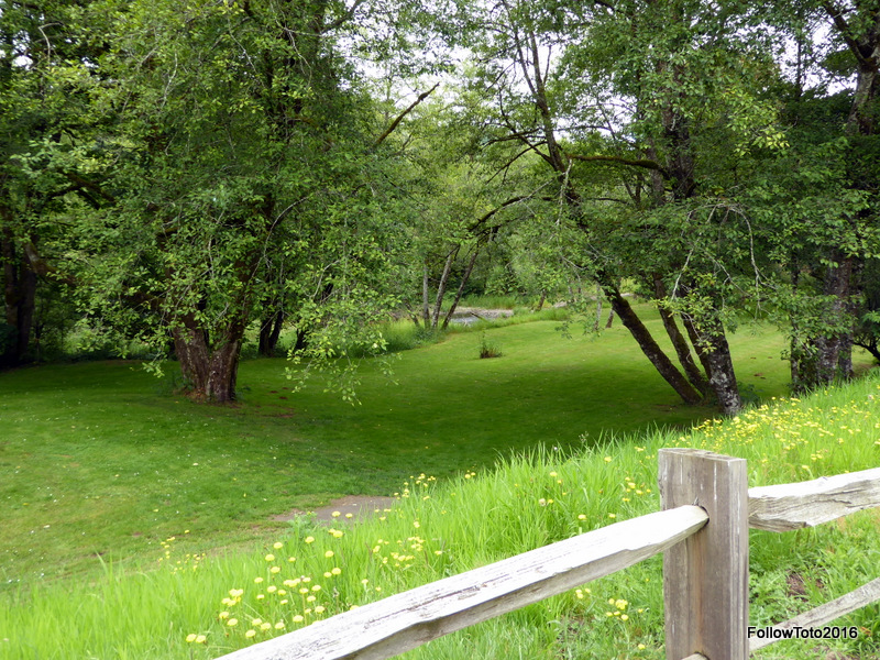 See what I mean? Creek, meadow, split-rail fence, wildflowers, and very few people. Nice rest area.